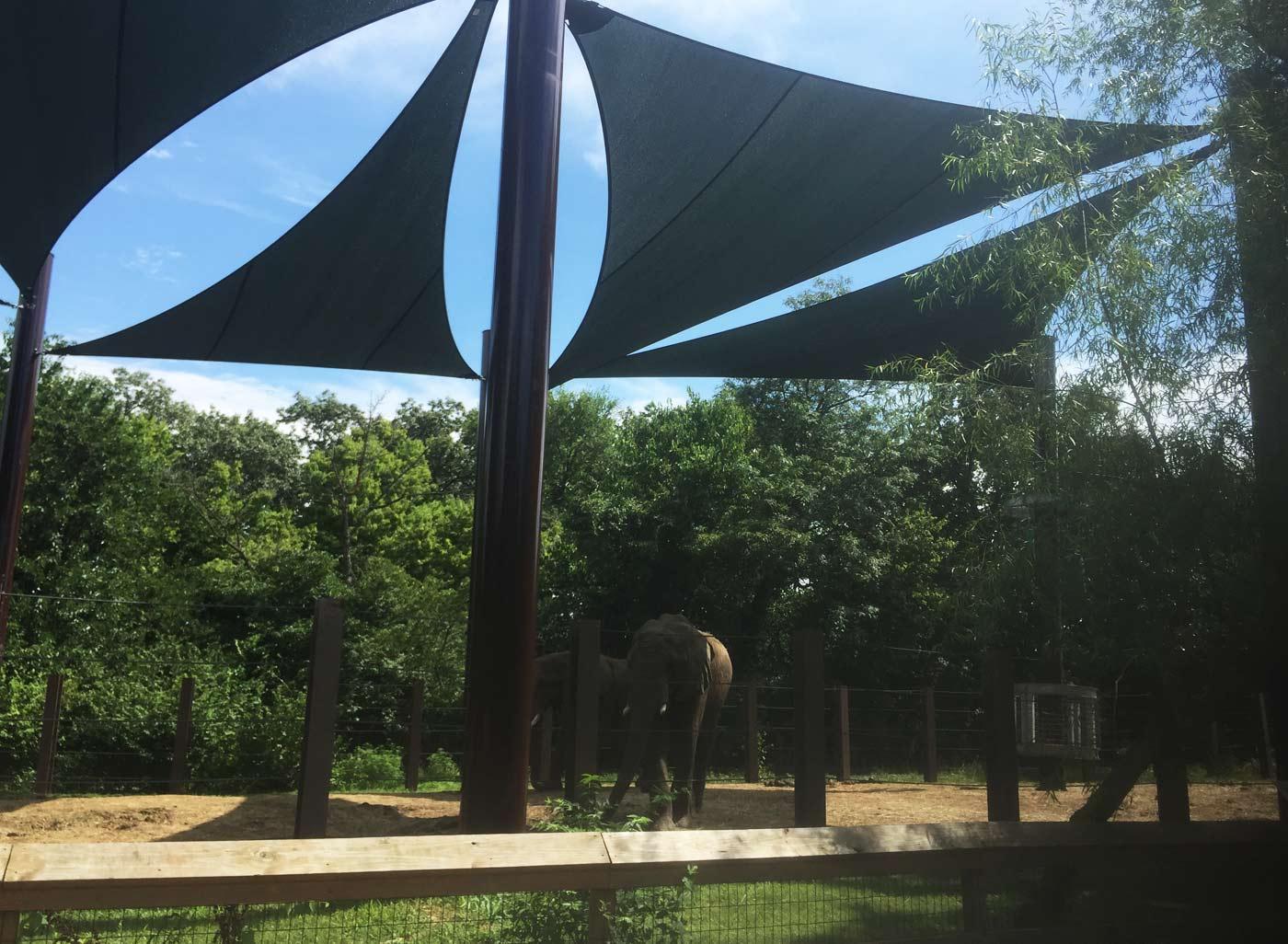 SkyWays zoo shade